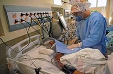 Số ca nhiễm COVID-19 tại Brazil vượt mốc 2 triệu người