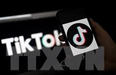 TikTok công bố quỹ 200 triệu USD tại Mỹ khuyến khích sáng tạo video