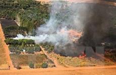 Vùng đầm lầy nhiệt đới lớn nhất thế giới hứng chịu hỏa hoạn kỷ lục