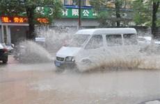 Trung Quốc: Bão Hagupit gây mưa lớn và ngập lụt tại Thượng Hải