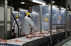 Nhà chế biến thịt Canada dừng xuất khẩu thịt lợn sang Trung Quốc
