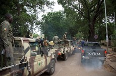 Đảo chính Mali: ECOWAS họp thượng đỉnh bất thường bàn giải pháp gỡ rối
