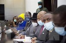 Phái đoàn ECOWAS nỗ lực khôi phục chế độ dân sự ở Mali