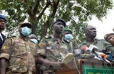 Nhóm sỹ quan đảo chính muốn quân đội lãnh đạo cơ quan chuyển tiếp Mali
