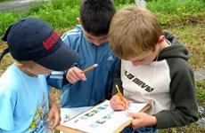 Mỹ: Bang New York khuyến khích việc dạy học ngoài trời
