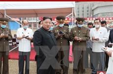 Khủng hoảng kinh tế nghiêm trọng 'thách thức' lãnh đạo Kim Jong-un