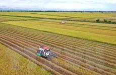 Thành tựu 75 năm phát triển kinh tế: Nông nghiệp là nền tảng, trụ đỡ