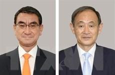 Nhật Bản: LDP xem xét thời điểm bỏ phiếu bầu chủ tịch mới