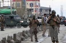 Tấn công liều chết bên ngoài doanh trại cảnh sát ở Afghanistan