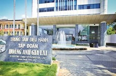 HOSE duy trì diện cảnh báo đối với cổ phiếu của Hoàng Anh Gia Lai, LEC