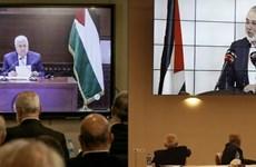 Các phe phái tại Palestine cam kết thúc đẩy hòa giải dân tộc