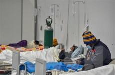 Số ca nhiễm COVID-19 tại khu vực Mỹ Latinh vượt mức 8 triệu