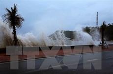 Thanh Hóa đến Bình Thuận chủ động ứng phó mưa lũ và bão số 5