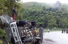 Sơn La: Xe tải chở trâu mất lái khi đổ đèo Chiềng Đông, lao vào taluy