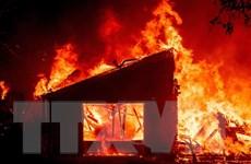 Mỹ: Cháy rừng tại bang California khiến hơn 50.000 người phải sơ tán