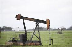Mỹ-Trung: Khi quốc gia dầu đối đầu với quốc gia điện