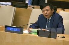 Việt Nam, Indonesia kêu gọi tiếp cận toàn diện trong vấn đề Mali