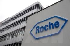 Roche sẵn sàng triển khai xét nghiệm COVID-19 công suất cao