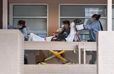 Dịch bệnh COVID-19: Gần 1.000 ca tử vong tại Mỹ trong 24 giờ qua