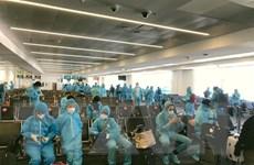 Phối hợp đưa 370 công dân Việt Nam từ Liên bang Nga về nước