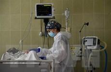 Thế giới đã ghi nhận gần 41,5 triệu ca nhiễm COVID-19