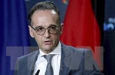 Liên minh châu Âu hy vọng vào sự hợp tác gần gũi hơn với Mỹ