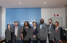 Chủ động tìm hướng thúc đẩy quan hệ kinh tế Việt Nam-Nam Phi