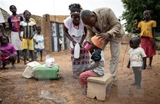 WHO cảnh báo dịch COVID-19 làm gia tăng số ca tử vong vì sốt rét