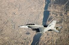 Australia tạm dừng hoạt động phi đội máy bay chiến đấu