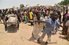 WFP cảnh báo về một ''đại dịch đói'' tồi tệ hơn đại dịch COVID-19