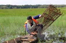 Du lịch Nam Bộ: Tăng liên kết, phát triển sản phẩm đặc thù