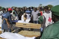 Niger: Ít nhất 27 người thiệt mạng trong vụ tấn công của Boko Haram