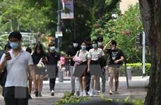 Dịch COVID-19: Singapore mở hành lang đi lại đặc cách từ giữa tháng 1