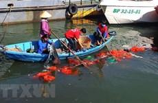 Giảm thiểu rác thải nhựa trên biển: Thách thức toàn cầu