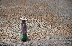 Cuộc chiến chống biến đổi khí hậu: Trách nhiệm đối với tương lai