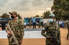 Cộng hòa Trung Phi tiến hành bầu cử tổng thống và quốc hội