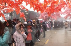Sa Pa đón trên 65.000 lượt du khách trong kỳ nghỉ Tết Dương lịch