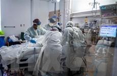 Mỹ thử nghiệm lâm sàng quy mô lớn liệu pháp kháng thể đơn dòng