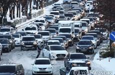 Hàn Quốc: Nhiệt độ giảm xuống mức thấp nhất trong 35 năm qua