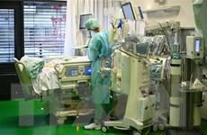Toàn thế giới ghi nhận gần 88,5 triệu ca nhiễm virus SARS-CoV-2