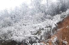 [Photo] Băng giá trên đỉnh đèo Khau Phạ ở Yên Bái