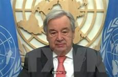 Tổng Thư ký Liên hợp quốc Guterres tìm kiếm nhiệm kỳ thứ 2