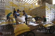 Ngăn chặn vi phạm hợp đồng cung cấp gạo dự trữ sau khi trúng thầu