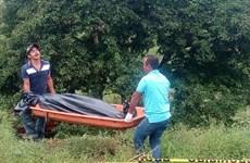 Mexico: Xung đột giữa 2 nhóm tự vệ địa phương, 12 người thiệt mạng