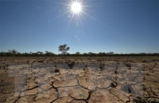Tăng tốc hành động để thích ứng với biến đổi khí hậu