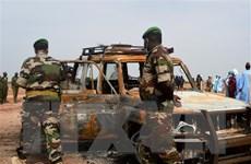 HĐBA thông qua Tuyên bố Chủ tịch về tình hình Tây Phi và Sahel