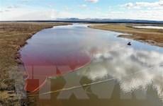Tập đoàn khai khoáng Nga bồi thường gần 2 tỷ USD sau sự cố tràn dầu