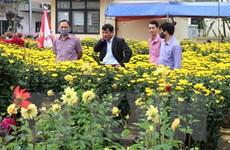 Tròn 100 ngày hồi sinh của người dân ở vùng ''rốn lũ'' Quảng Trị
