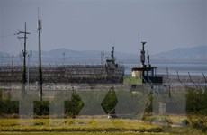 Mỹ-Hàn Quốc-Nhật Bản thảo luận về phi hạt nhân hóa Bán đảo Triều Tiên