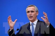 Các nhà lãnh đạo EU thảo luận tăng cường khả năng phòng thủ